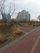 Der Fahrradweg xD