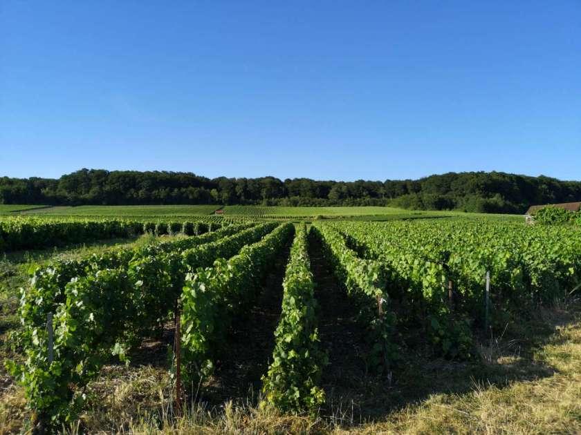 Champagnemarker Romery