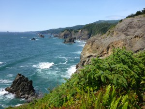 A beautiful bluff north of Brookings, on the Oregon coast.