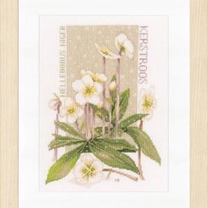Lanarte Borduurpakket - Witte pracht