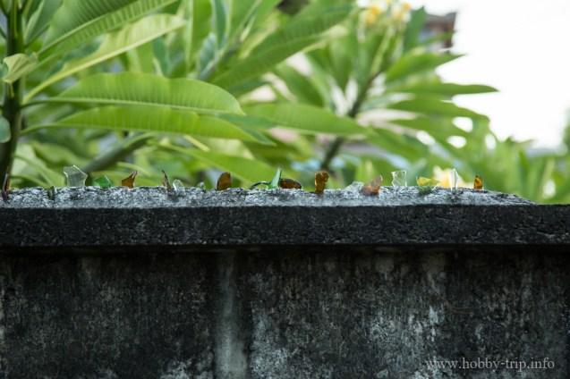 Ограда против крадци - Кута, Бали
