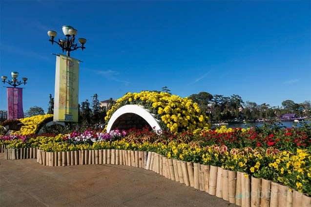 Flower festival in Da Lat