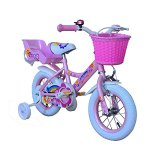 American-Phoenix-Upgraded-Multi-Size-Girl-Bike-12-Inch-16-Inch-Wheels-Avaiable-BMX-Freestyle-Bicycle-With-Training-Wheels-Steel-Frame-Newest-Stytle-Girls-Bike-0-1