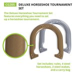 Champion-Sports-Tournament-Horseshoe-Set-Classic-Outdoor-Lawn-Game-includes-Two-Chrome-Two-Brass-Plated-Professional-Horseshoes-with-Solid-Steel-Stakes-Carrying-Case-0-1