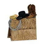Club-Pack-of-12-Multi-Colored-3-D-Country-Western-Centerpiece-Party-Decorations-11-0