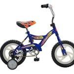 Fun-Wheels-12-Sidewalk-Bicycle-0