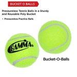 GAMMA-Pressureless-Tennis-Ball-Bucket-Case-w48-Practice-Balls-SturdyReusablePortable-Bucket-to-Replace-Less-Durable-Tennis-Mesh-Bags-Ideal-For-All-Court-Types-Gamma-Premium-Tennis-Accessories-0-1