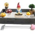 Gnome-in-the-Home-Tabletop-Zen-Garden-by-CAS-0