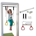 Indoor-Swing-by-DreamGYM-Trapeze-Bar-and-Gymnastic-Rings-Combo-for-Doorway-Gym-0