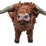 Pinatas-Texas-Longhorn-Pinata-Party-Game-and-Centerpiece-Decoration-for-Western-Party-0
