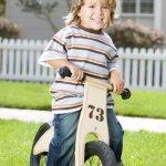 Prince-Lionheart-Balance-Bike-0-2