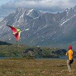 Prism-Quantum-Dual-line-Stunt-Kite-0-2