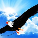 The-Mighty-Bald-Eagle-3d-Kite-with-6-6-78-Inch-Wing-Span-with-Realistic-Proportions-and-Made-of-Premium-Materials-0