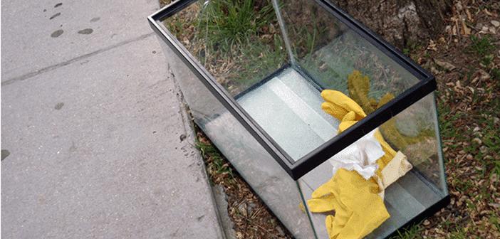 Cómo limpiar un acuario usado o de segunda mano