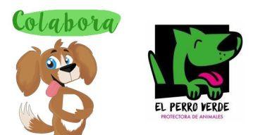 ¡Colabora con El perro verde!