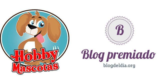 Blog-premiado-en-blogdeldia