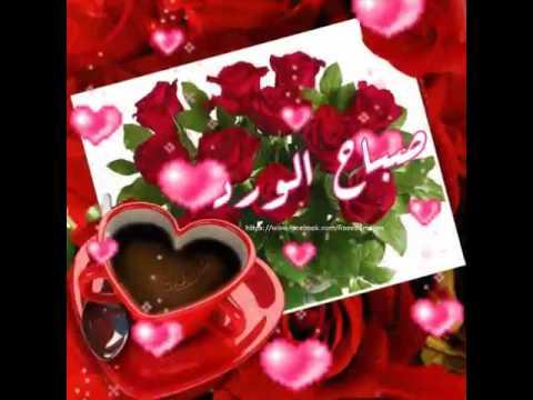 ورد صباح الخير اجمل صورة ورود مكتوب عليها كلمات صباحية حبيبي
