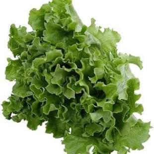 Tip Memilih Bahan-Bahan Salad (Selada) & Persiapan