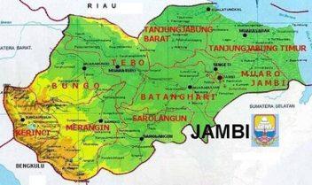 Harga Jual DOC atau Bibit Ayam Kampung Super (JOPER) untuk Daerah Jambi