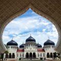 Harga Jual DOC atau Bibit Ayam Kampung Super (JOPER) untuk Daerah Banda Aceh