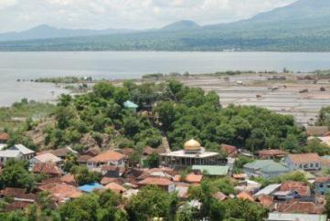 Harga Jual DOD atau Bibit Bebek Peking & Hibrida Pedaging untuk Daerah Bima Nusa Tenggara Barat