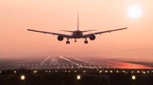 Pengiriman DOD bebek via pesawat