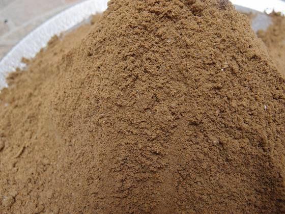 Bekatul adalah bagian terluar dari bagian bulir yang terbungkus oleh sekam. Bulir adalah buah sekaligus biji berbagai tumbuhan serealia sejati, seperti padi, gandum, dan jelai