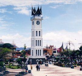 Harga Jual DOC atau Bibit Ayam Kampung Super (JOPER) untuk Daerah Bukittinggi Sumatera Barat