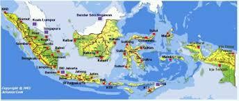 Usaha Ternak Ayam Kampung Super (JOPER) Yang Ekonomis Dan Menguntungkan