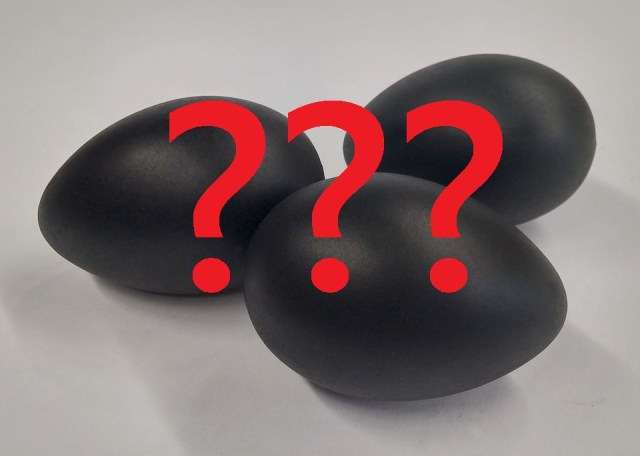 The color of Ayam cemani chicken eggs is still a mystery, is it really black or not   Black eggs