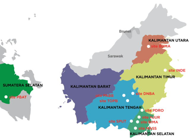 Daftar Harga DOD Bebek Hibrida untuk wilayah Pulau Kalimantan
