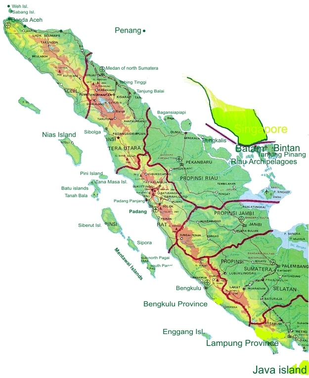 Harga Jual DOC atau Bibit Ayam Petelur untuk wilayah Pulau Sumatera