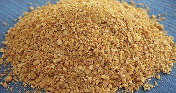 Sumber pakan alternatif untuk bebek petelur adalah bungkil kedelai.