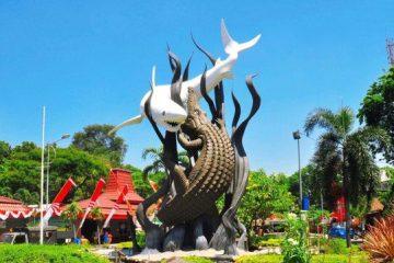 Harga Jual DOC atau Bibit Ayam JOPER di Surabaya
