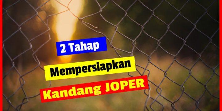 2 Tahap Mempersiapkan Kandang Ayam Kampung Jawa Super (JOPER)