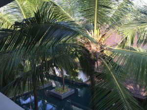 Image of the view from the room balcony in alila Diwa Goa