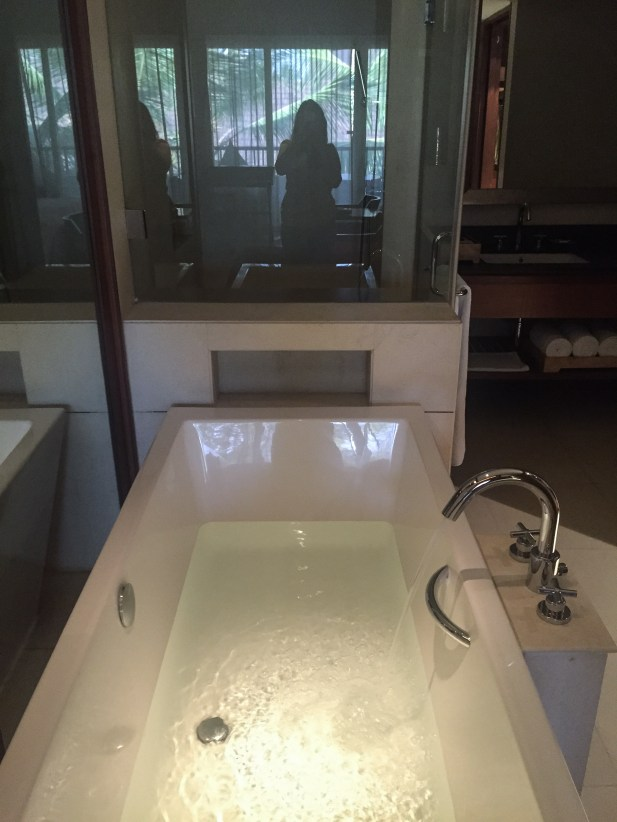 bathtub-alila-diwa-goa
