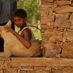 local-life-bishangarh