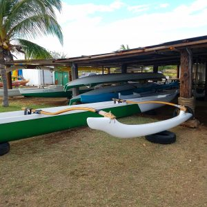 "I've got a couple patients here from outrigger-canoe-related-injuries. I finally took this canoe out with 5 other paddlers the other day. It gave me a whole new appreciation for the biomechanics of the sport. Most kids here grow up with paddling as one of the primary sports. ""Doing is knowing"" in both biomechanics and culture. Whoa, deep."
