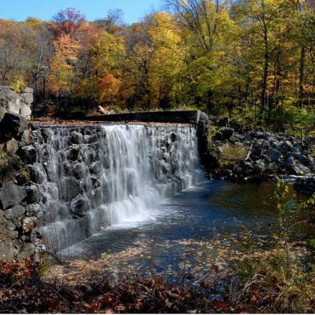 ringwood_state_park