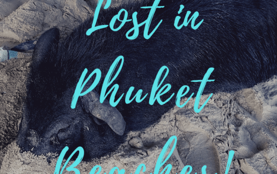 Lost in Phuket Beaches - hoboventures.com