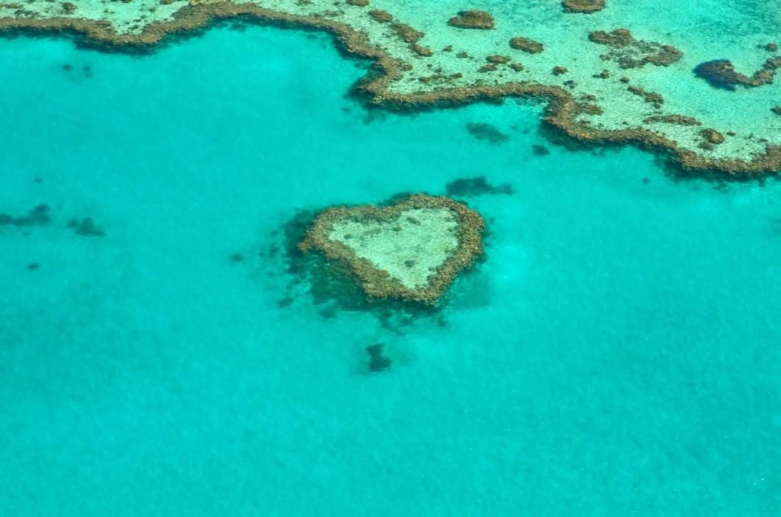 Deadline Travel Barrier Reef
