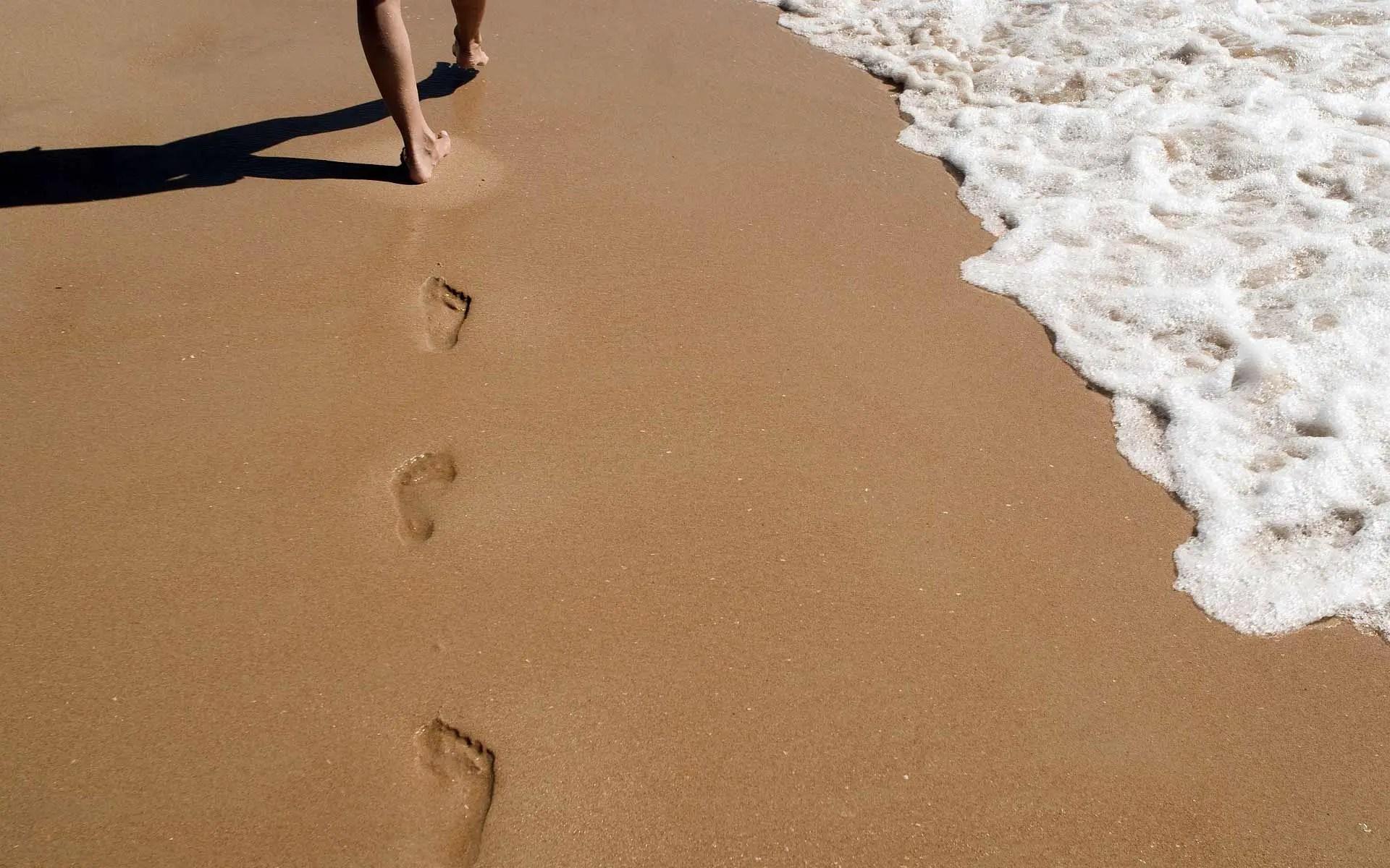 Divorce Process Step by Step