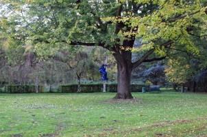 Köln / Stammheim: Schlosspark