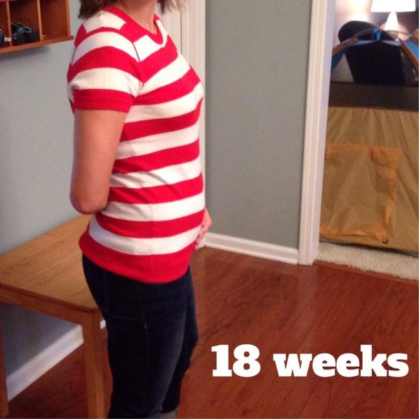 18 week bump