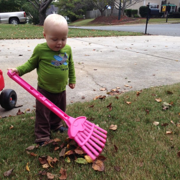 beau raking leaves