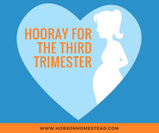 third trimester, 28 weeks pregnant