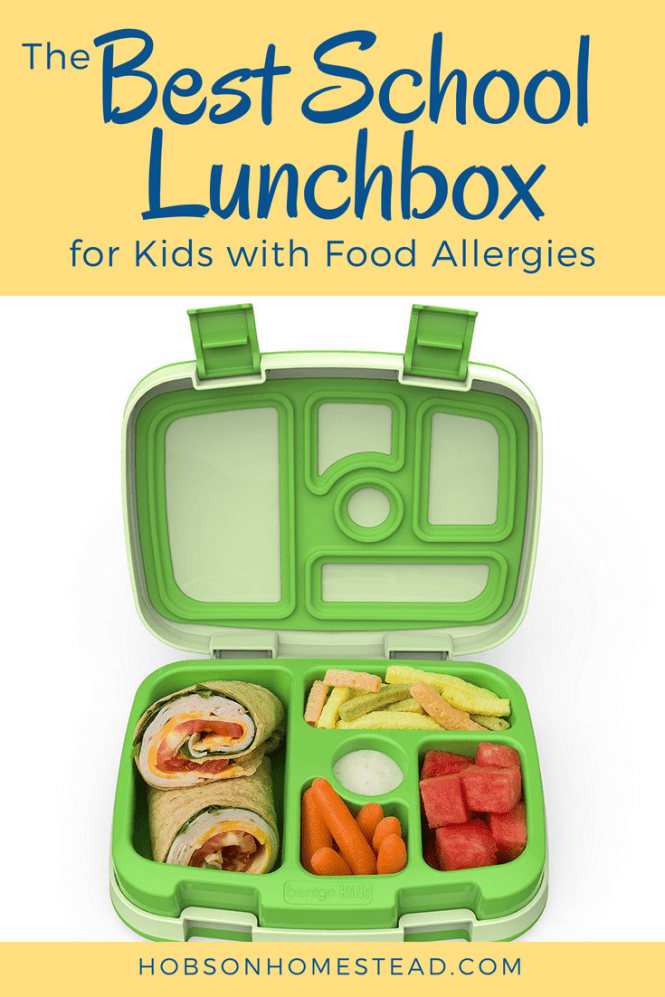 best lunchbox for kids with food allergies
