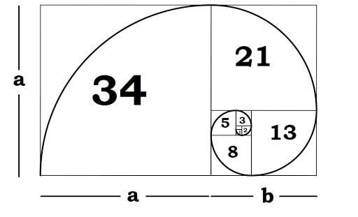 Tìm hiểu dãy Fibonacci là gì?