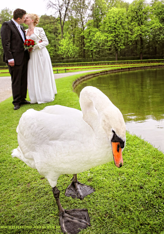 Fotoshooting Hochzeit 04: Hochzeitsbild mit Schwan